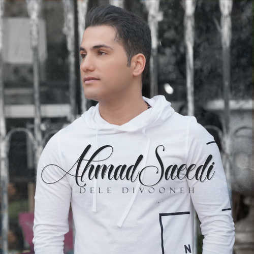دانلود اهنگ دل دیوونه از احمد سعیدی
