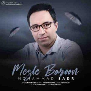 دانلود آهنگ مثل بارون از محمد صدر