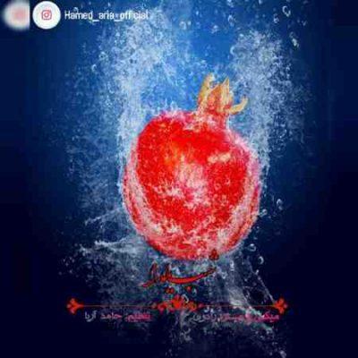 آهنگ جدید حامد آریا به نام شب یلدا