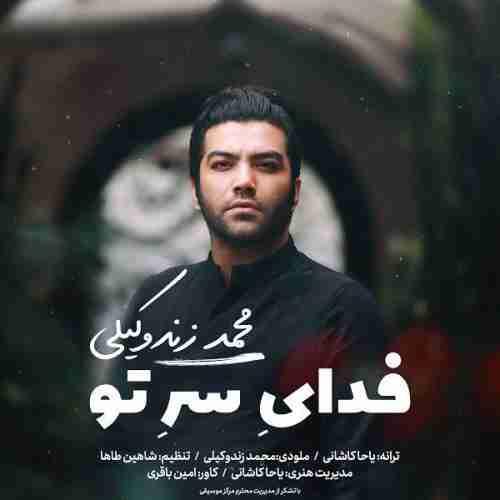 آهنگ جدید محمد زند وکیلی به نام فدای سر تو