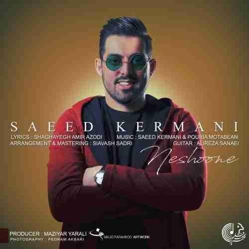 دانلود آهنگ نشونه از سعید کرمانی