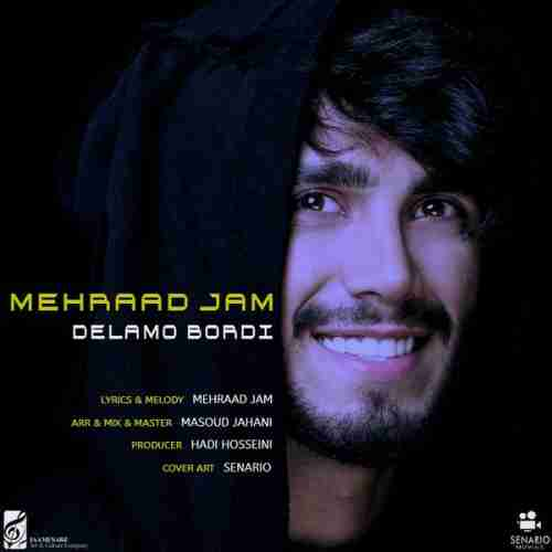 آهنگ جدید مهراد جم به نام دلمو بردی