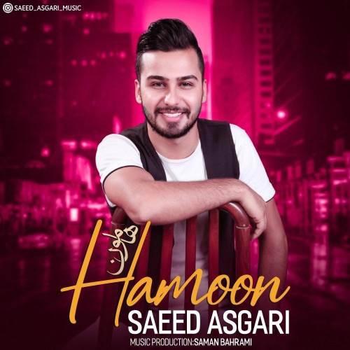 آهنگ جدید سعید عسگری به نام هامون