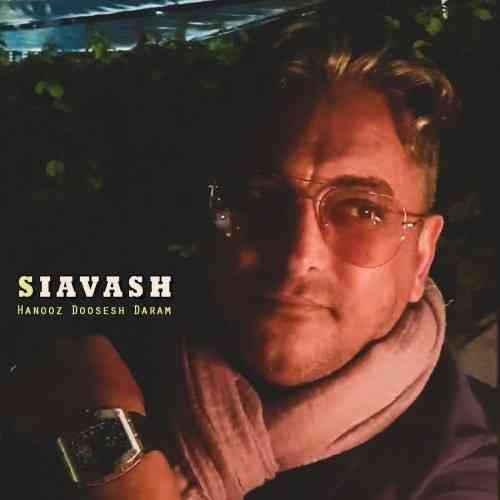 آهنگ جدید سیاوش شمس به نام هنوز دوست دارم