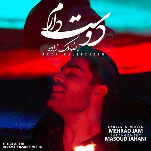 آهنگ جدید رضا ملک زاده به نام دوست دارم