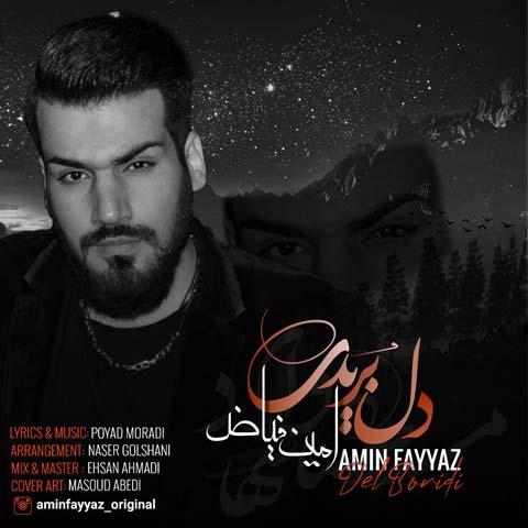 آهنگ جدید امین فیاض به نام دل بریدی